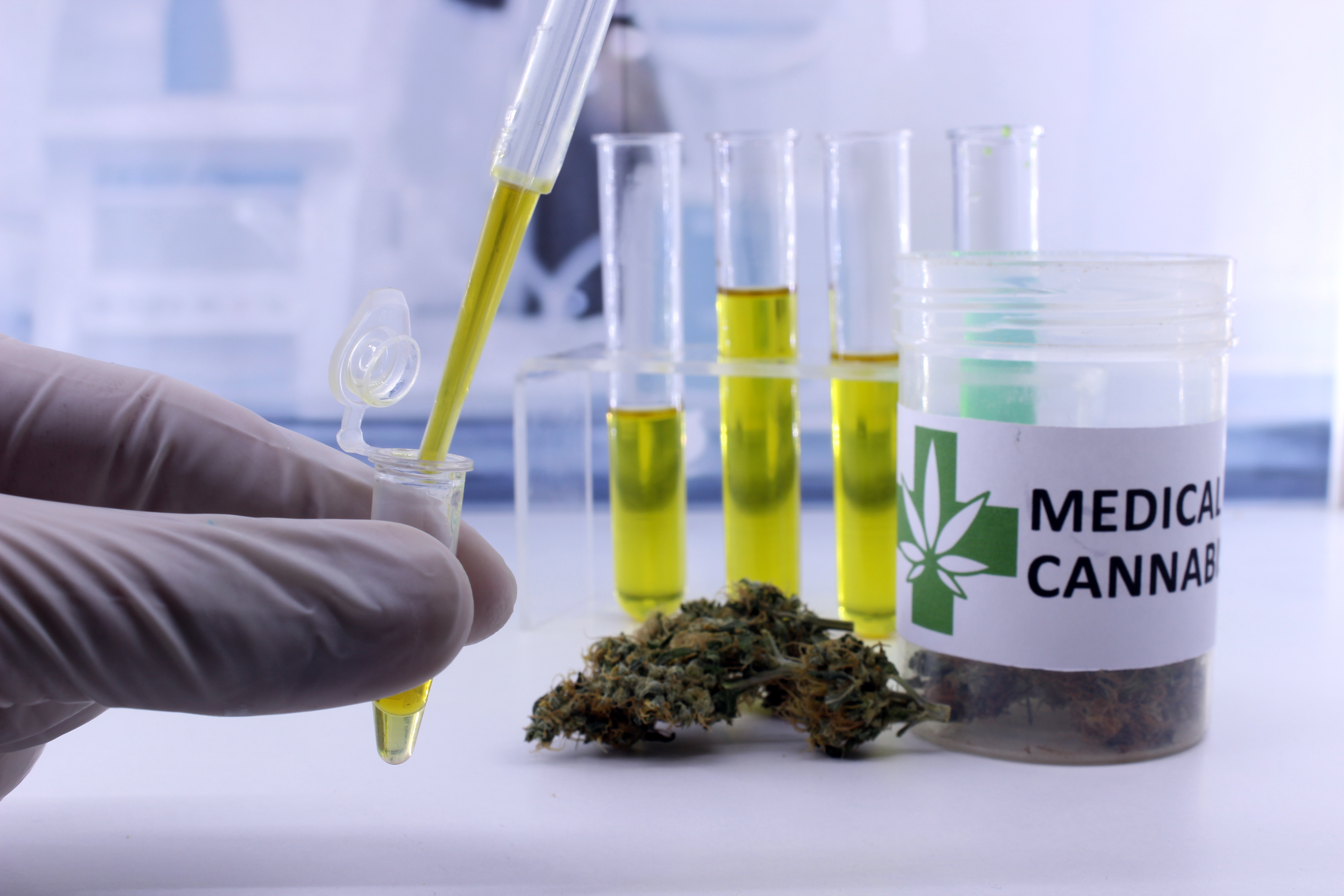 New study of link between cannabis, anxiety and stress